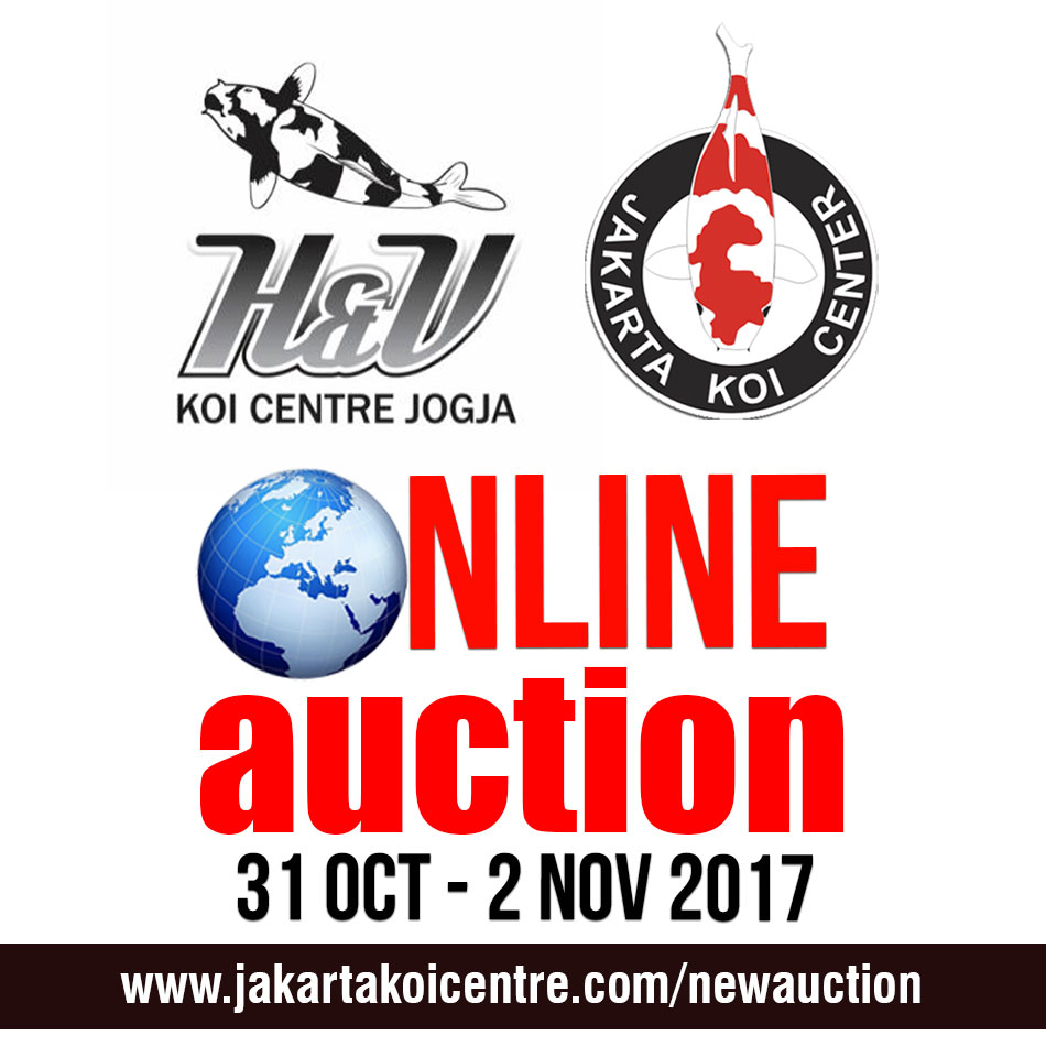 HnVonline auction Okt17