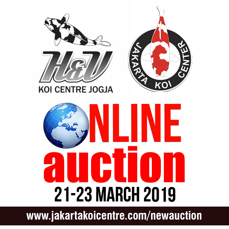 HnVonline auction Mar 19